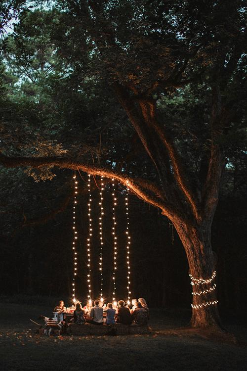 Lights hung from the trees