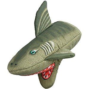 Sharkie!