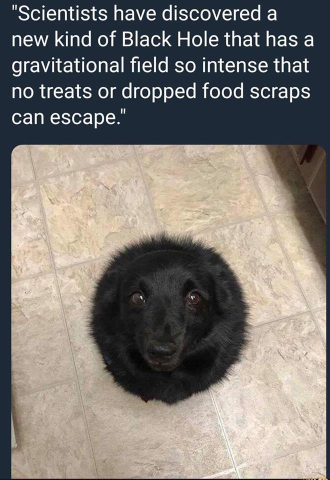 Scary Black Hole