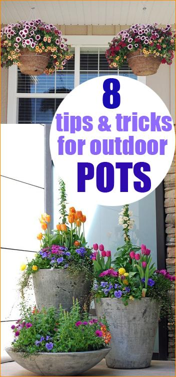 Great tips for your garden pots.