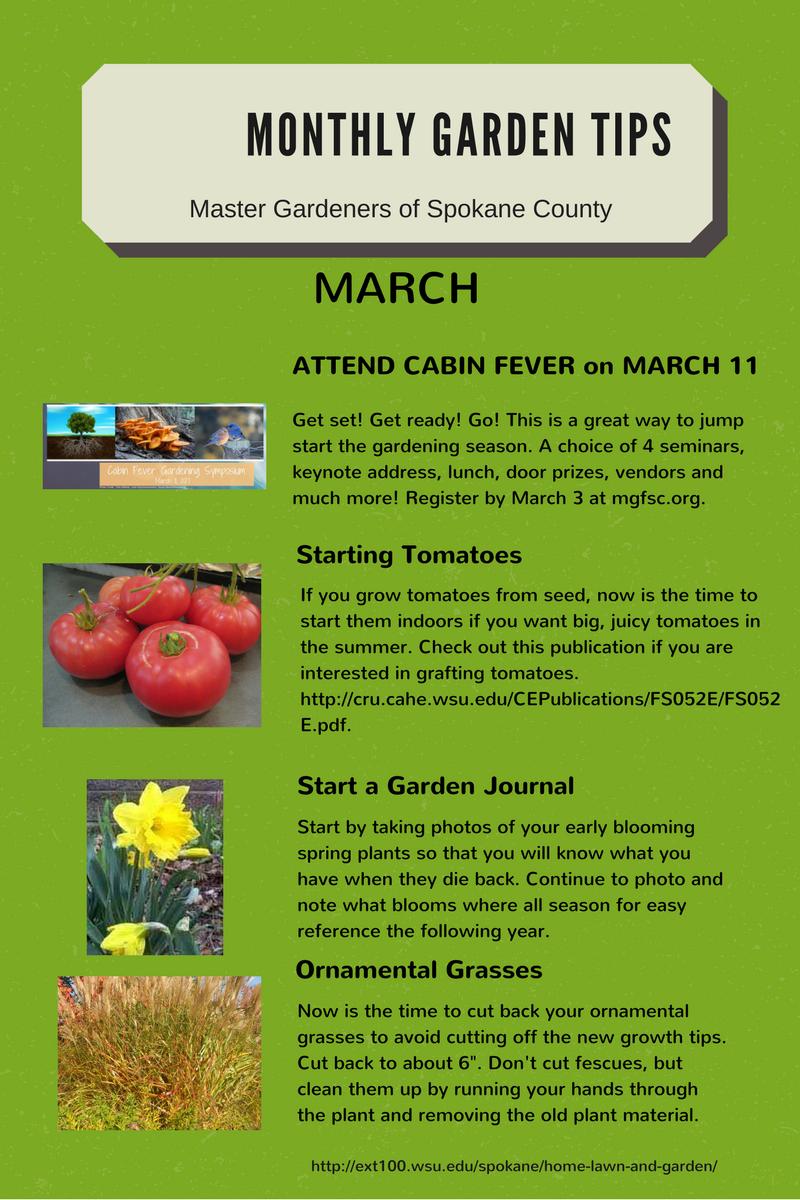 Monthly Garden Tips