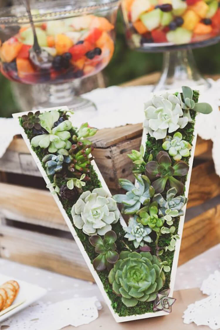 Succulent Planter Decoration