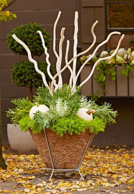 Gardening: Fall Planting