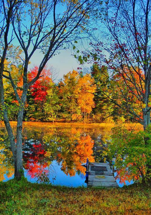 Beautiful fall colors at the lake
