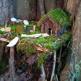 Faery house hidden in a root nook