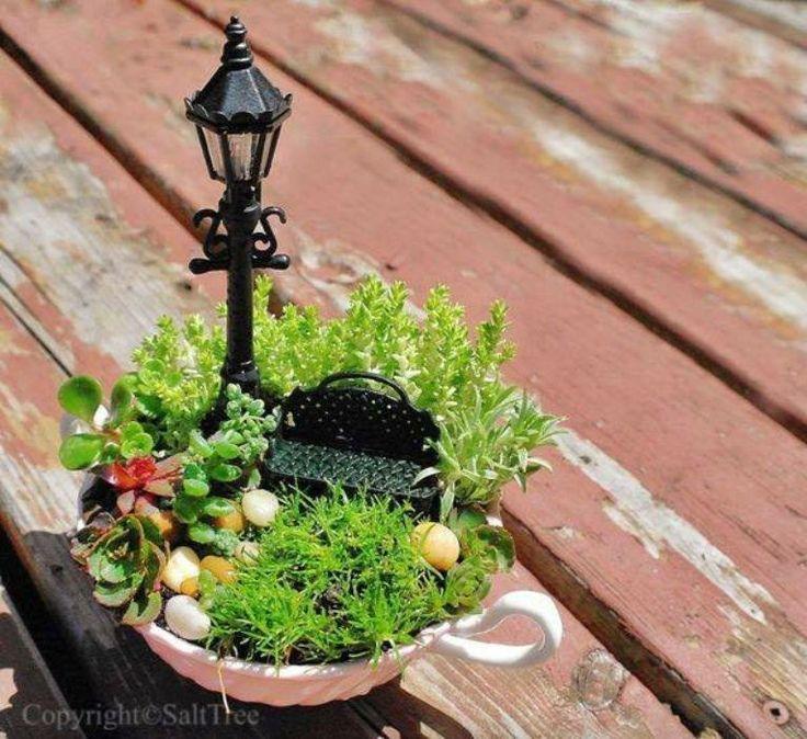 A mini teacup garden