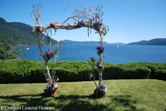 Wedding driftwood beach arch