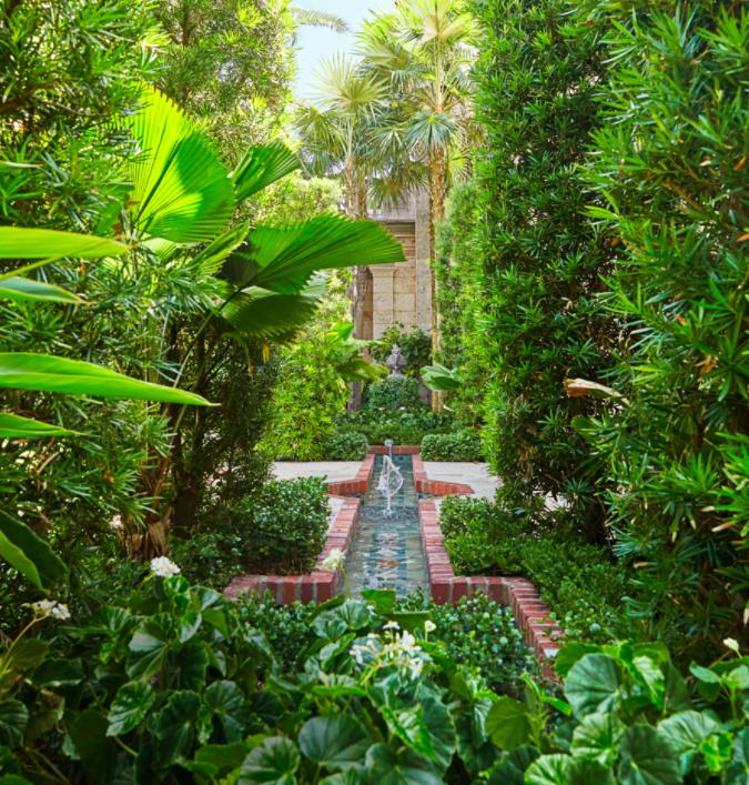 A lush landscaped garden