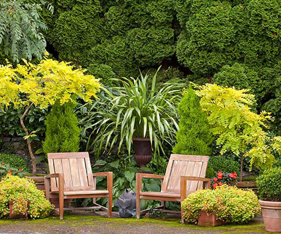 Gardening and Backyard- Makeover ideas