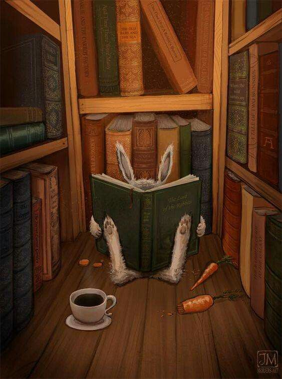 Bunny books
