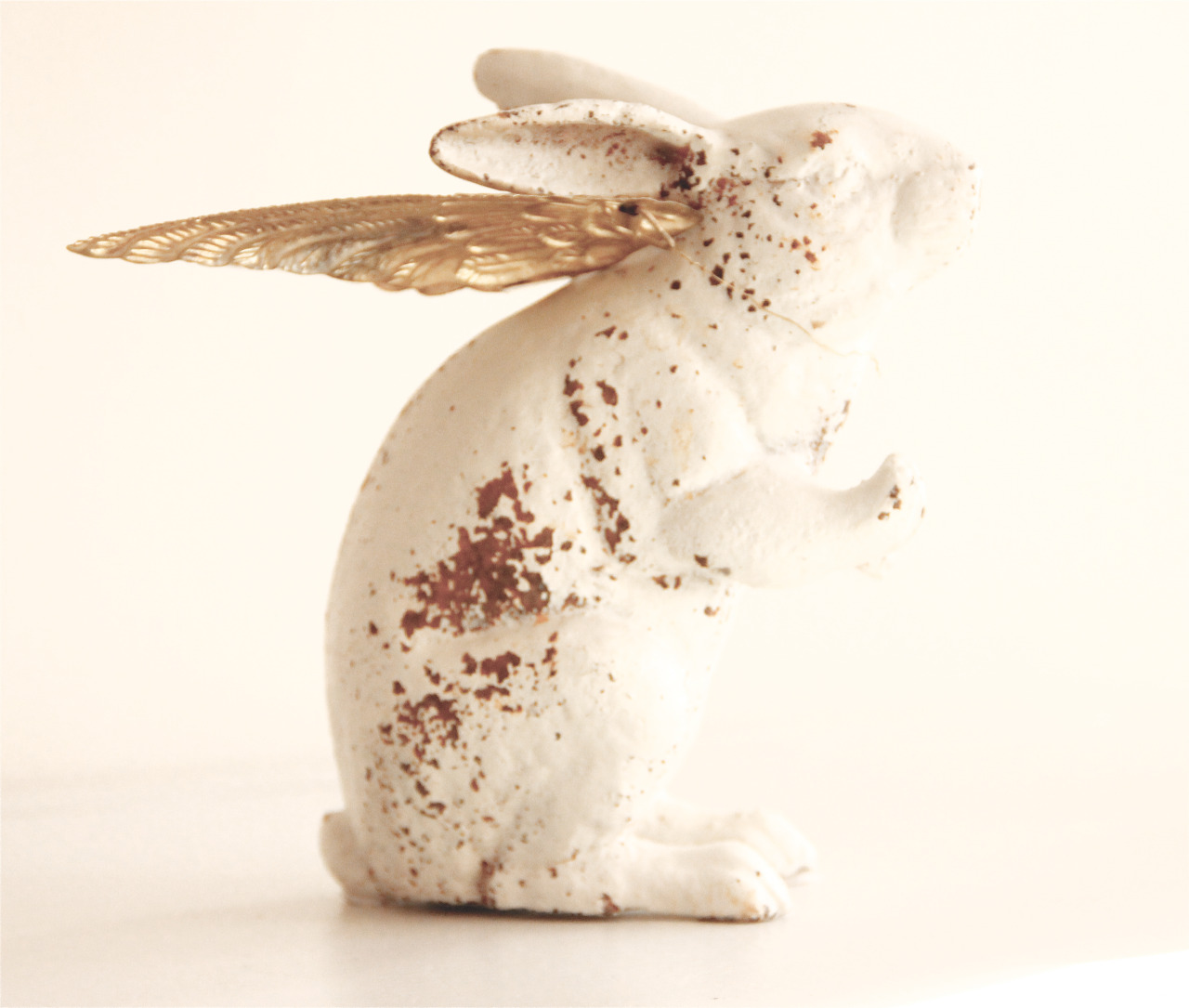 My hare has golden wings