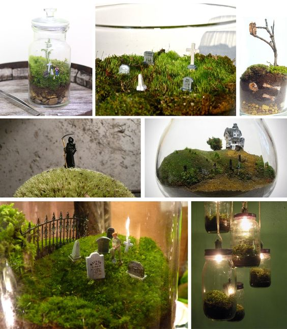 Ideas for making a cemeterrarium