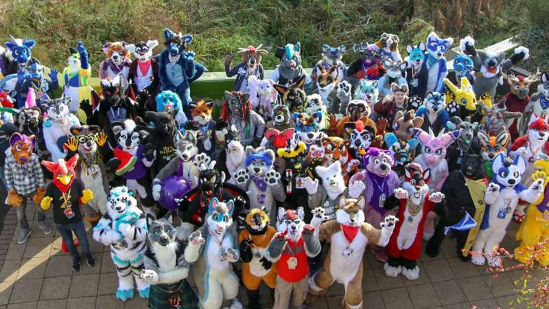 Lincoln Furries