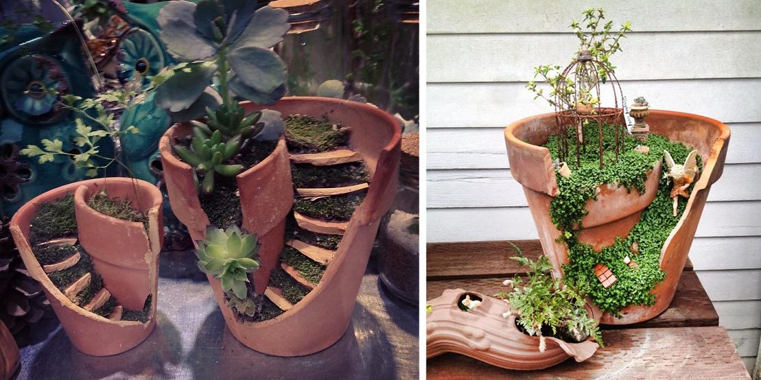 Container Gardening Ideas - Potted Plant Ideas We Love