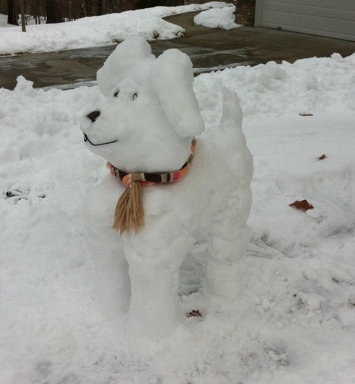 Snow-Shephard