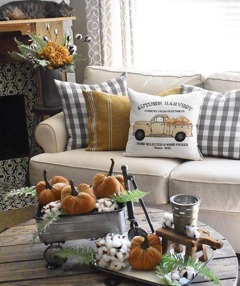 Autumn harvest pillows
