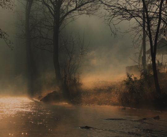 Mist on the stream