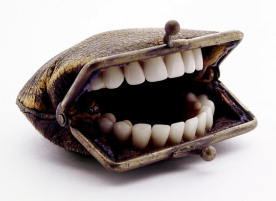 Teeth Purse