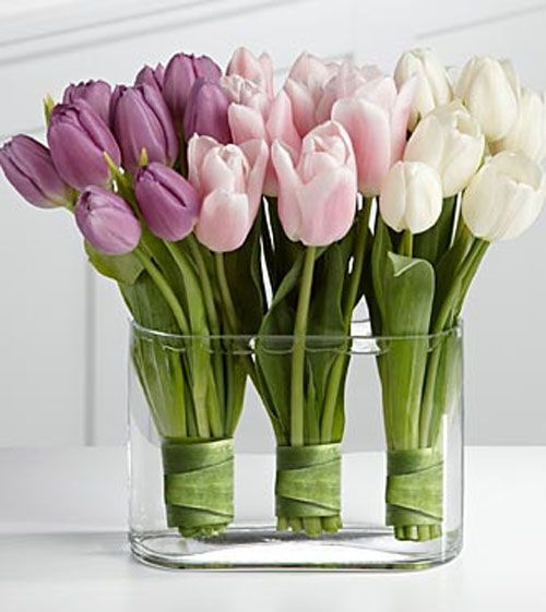 Ombre tulips with arrangements