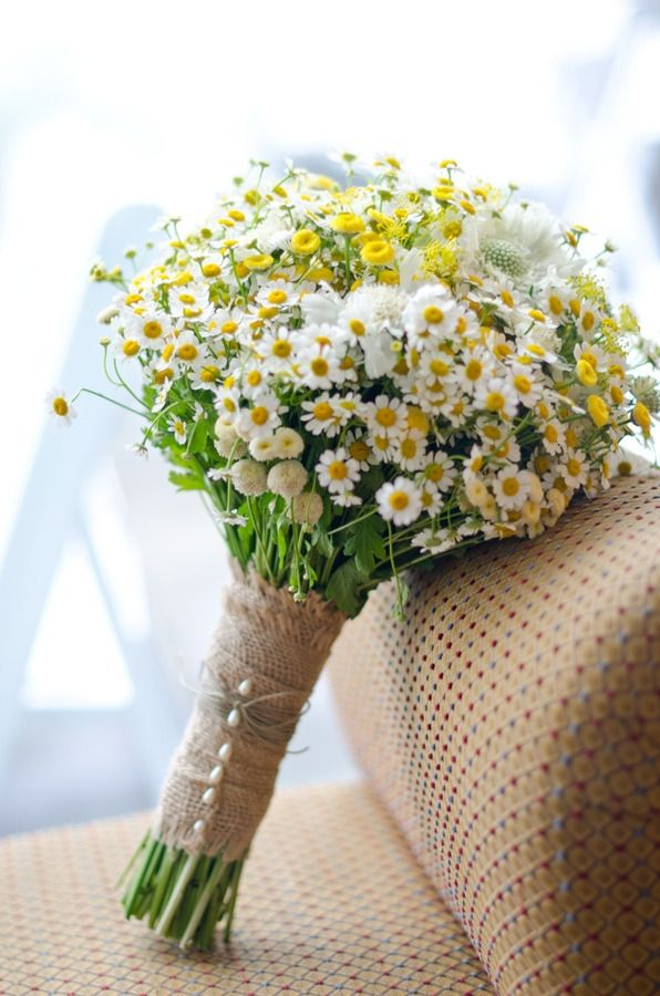 Wedding daisy library