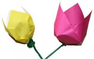Tulip paper folded origami